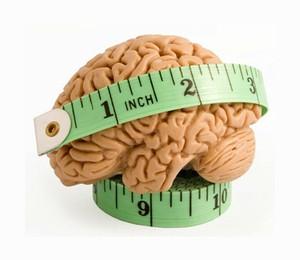 otizm beyin hacmi